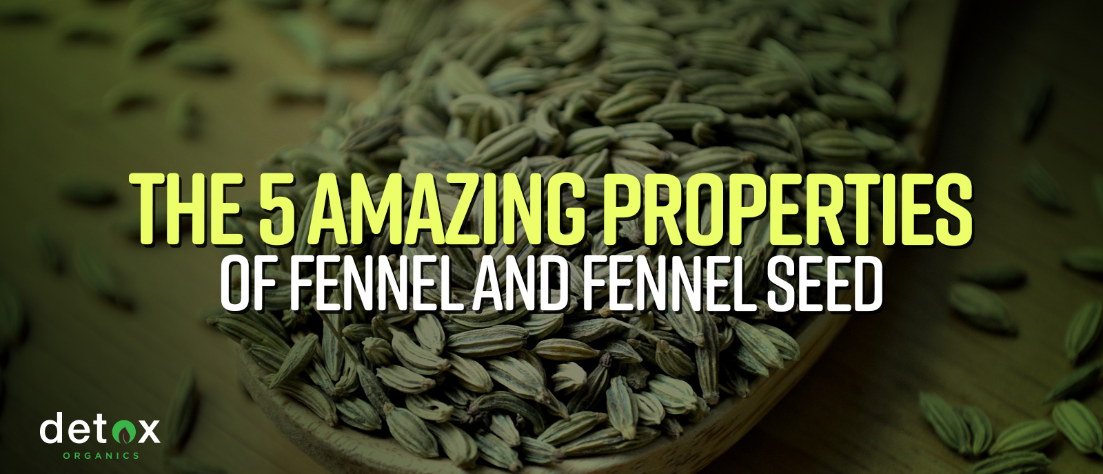 The 5 Amazing Properties of Fennel and Fennel Seed