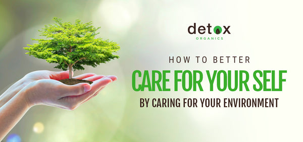 How to Better Care for Your Self By Caring for Your Environment
