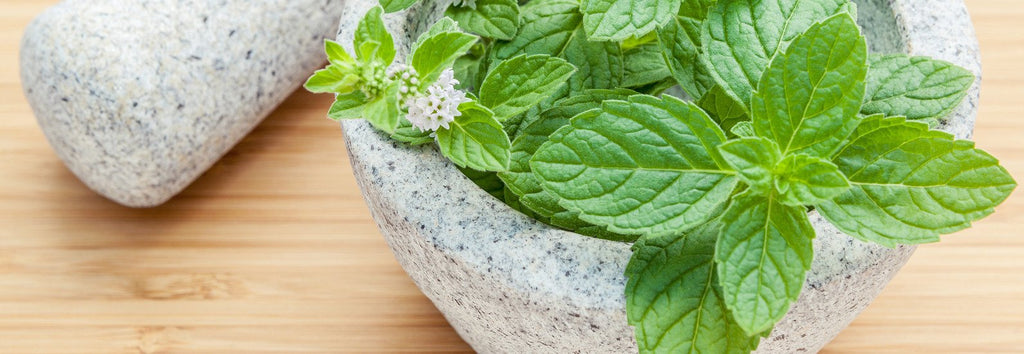 Detoxifying Superfoods: Peppermint