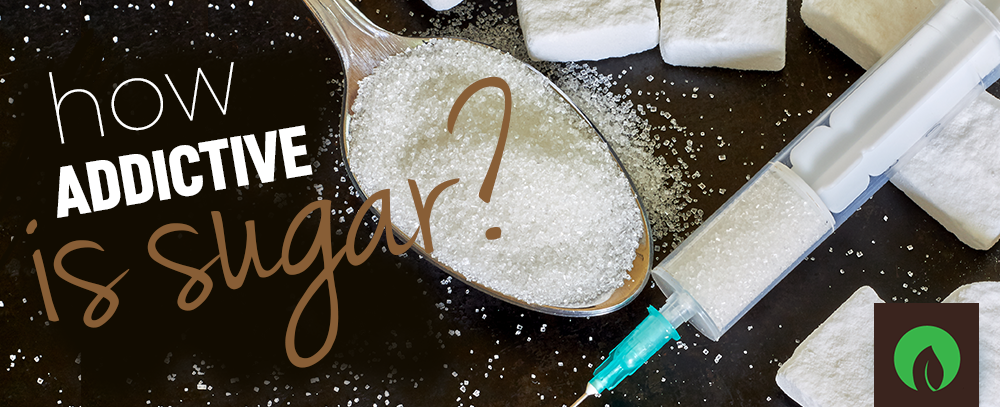 How addictive is sugar?