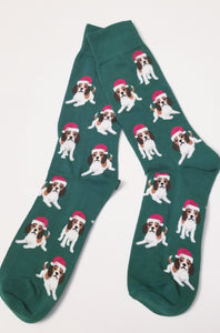 Beagle Foxhound Harrier Christmas Holiday Dog Socks