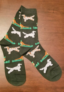 English Setter Hunting Dog With Pheasant Socks