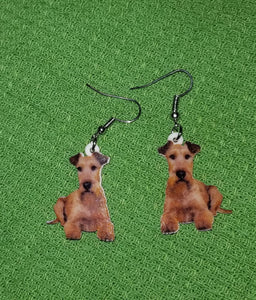Irish Terrier Dog Design Lightweight Earrings Jewelry