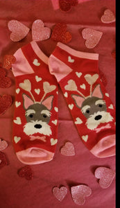 Schnauzer Terrier Dog Ladies Valentine's Day Heart Socks