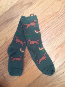 Irish Setter Hunting Dog with Pheasant Socks