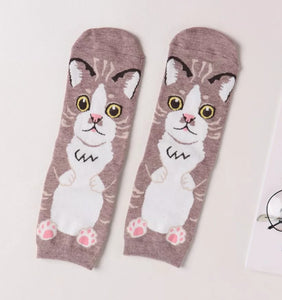 Sweet Cat Will Always Be Looking At You Ladies Socks 5 Colors to Choose from