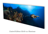 """In Flight"" 22X60 Limited Edition Satin over 80% off"
