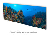 """Orange Canyon Rays"" 14X36 Limited Edition Gloss"