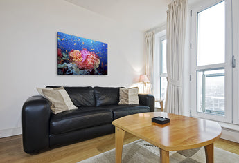 """Coral Reef Explosion"