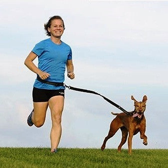 Dog Leash for Running, Walking, Jogging & Fitness with Zipper Bag