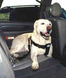 Vehicle Seat Belt for Pets - Starfelia