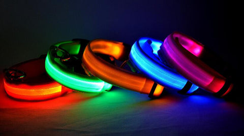 FREE! Dog LED Collar for Night Safety