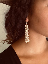 Ni'ihau Ghost Shell Earrings