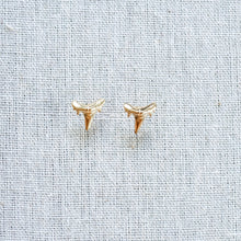 Shark Teeth Studs