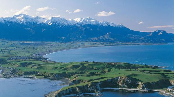 Kaikoura Day Trip