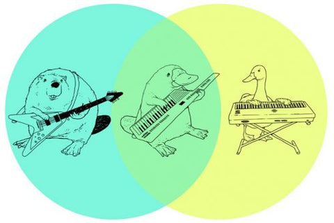 Platypus with a keytar Venn diagram.