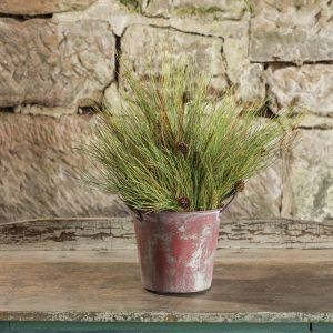 rustic bucket filled with bushy pine greenery