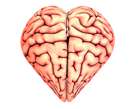 Brain and Heart Health Patch