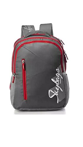 Skybags Neon New02 Backpack (Grey)