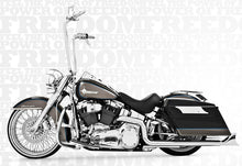 Freedom Performance Exhaust Sharktail True-Duals For Softail
