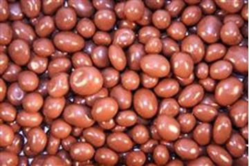Milk Choc Sultanas in 1KG Bag