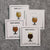 Beer Glass Enamel Lapel Pin Set - Tulip - Flight of 4