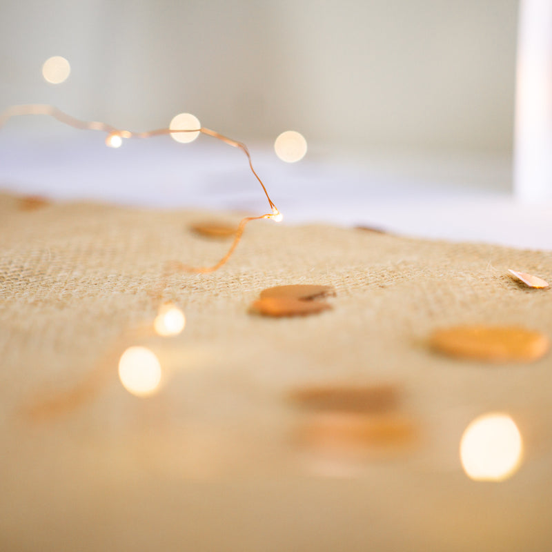Copper Wired Seed LED Fairy Lights