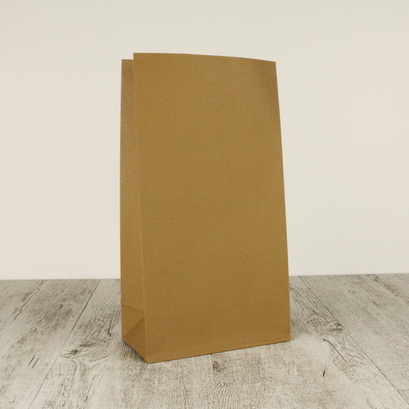 Large Brown Paper Bags