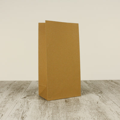 Medium Brown Paper Bags