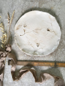 Botanical plate , dog rose 2
