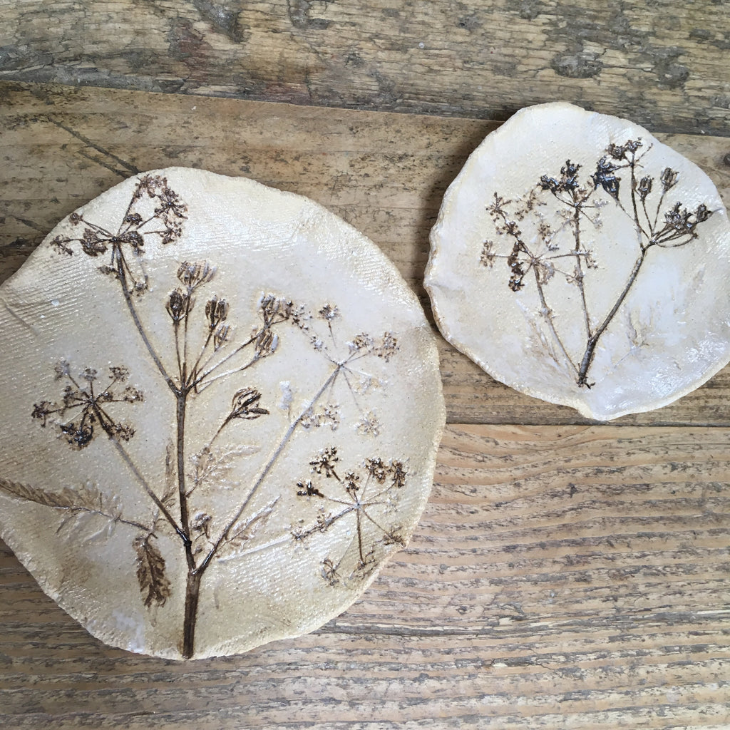 Botanical plate set , cow parsley Group A