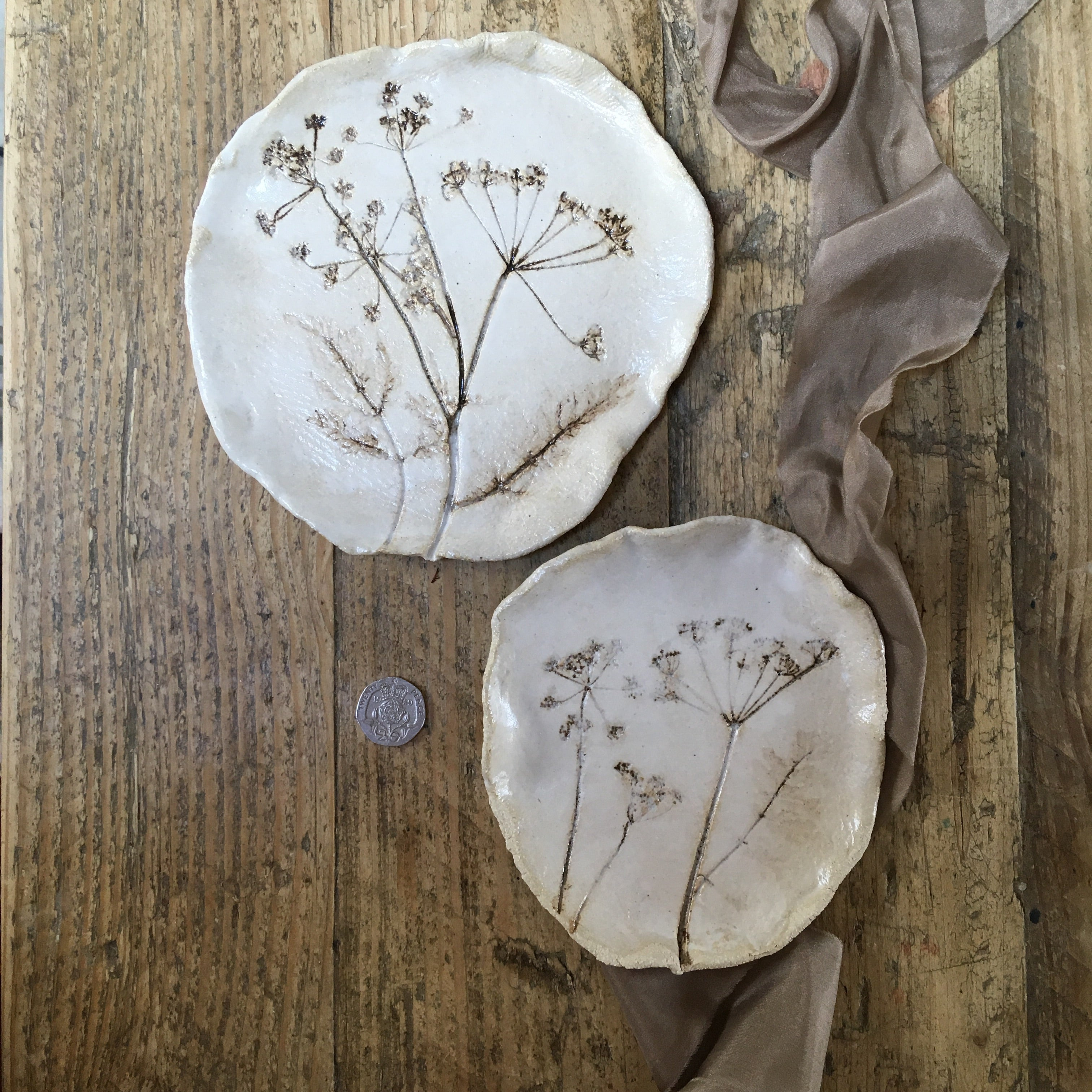 Botanical plate set , cow parsley Group B