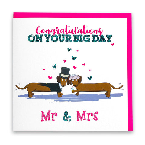 Mr & Mrs Dachshund