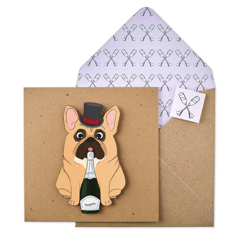 Congratulations French Bulldog - TACHE - 1