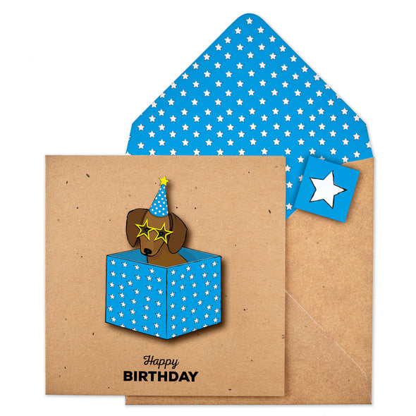 Birthday Box Dachshund