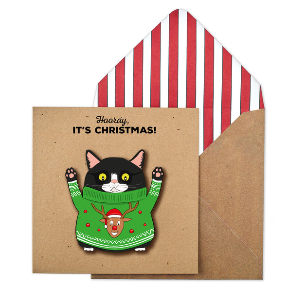 Hooray! It's Christmas Cat