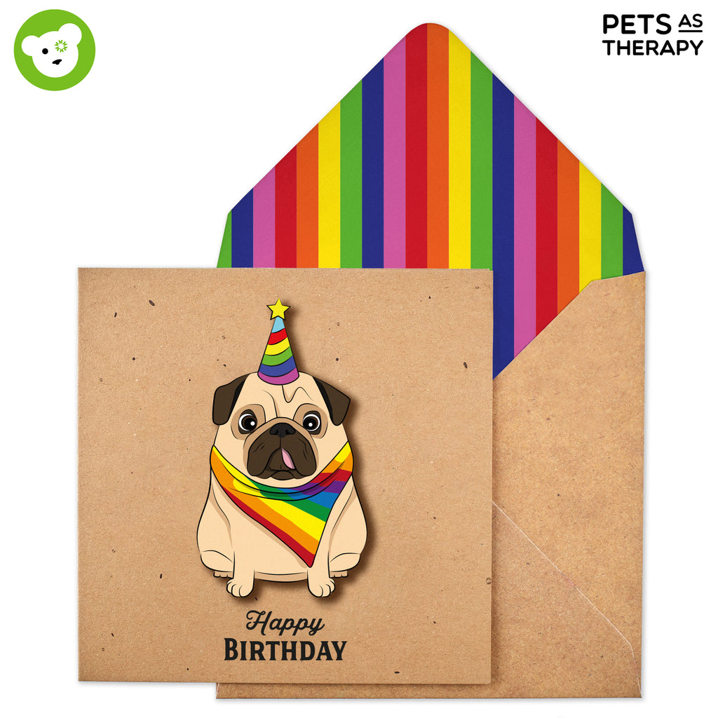 Alfie the Rainbow Pride Pug