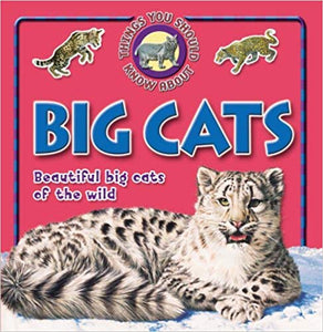 10-things-you-should-know-about-big-cats
