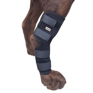 Extra Supportive Canine Leg Brace
