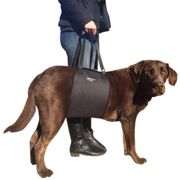 Dog support sling harness lift