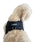 Chest Harness for use with Canine Knee Brace