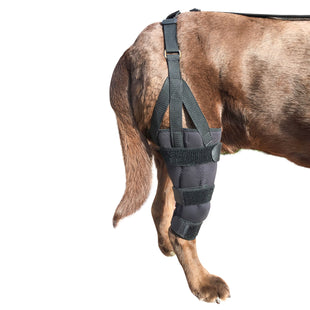 Canine Knee Brace with Hinged Metal Splints ACL, MCL, CCL, Patella Injuries