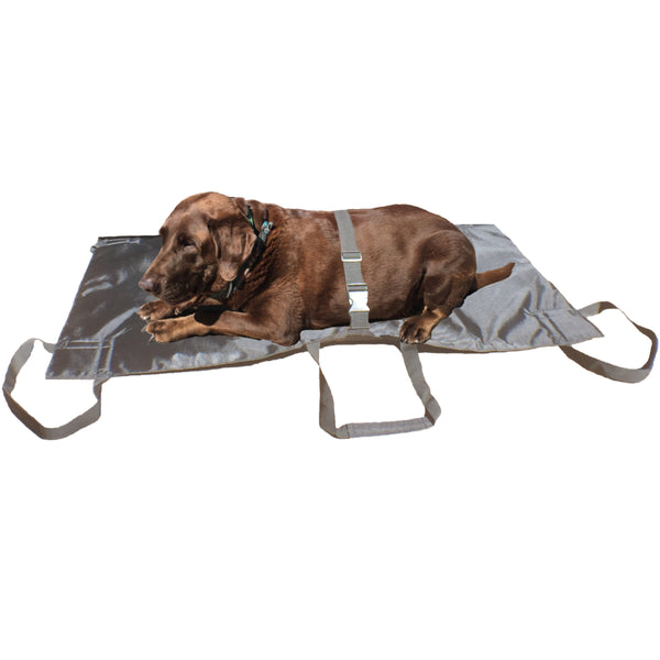 Heavy Duty Pet Stretcher