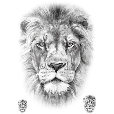 Realistic Lion - Pack - ArtWear Tattoo