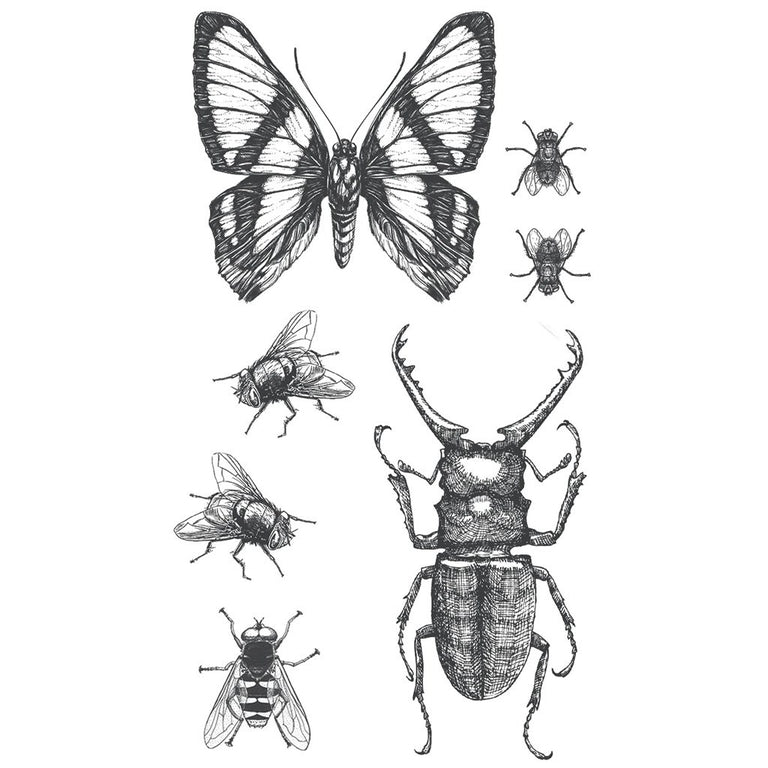 Tatouage éphémère : Insects - Pack - ArtWear Tattoo France - Tatouage temporaire