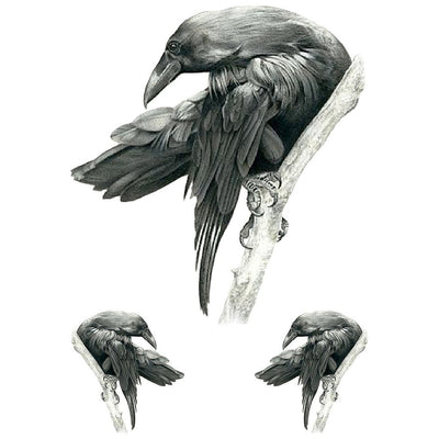 Black Raven - White Touch - ArtWear Tattoo