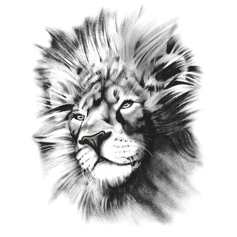 Animaux - Realistic Lion 2