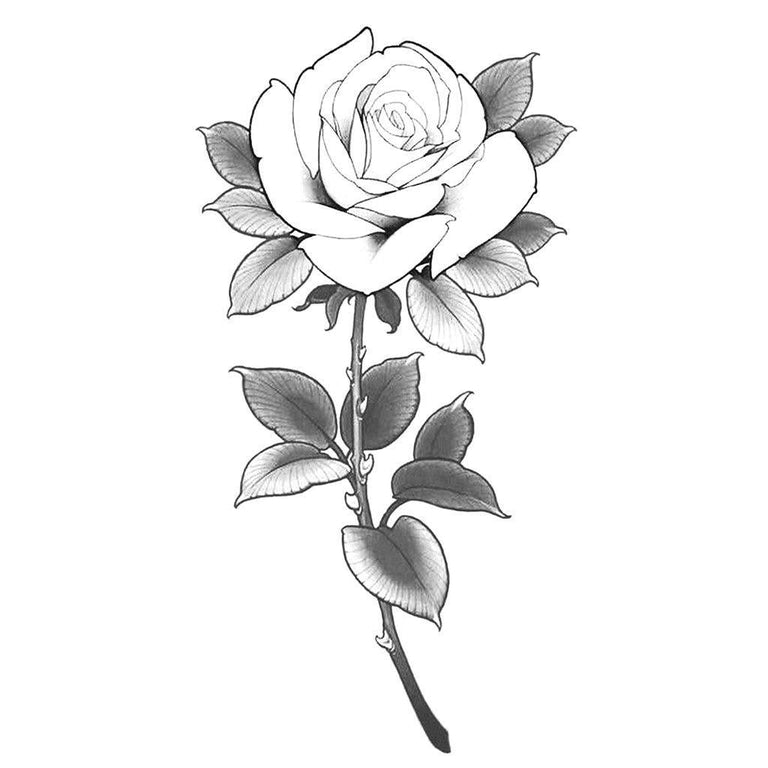 Delicate Rose - ArtWear Tattoo