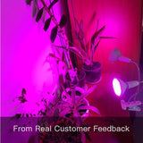 Plant Growth Light
