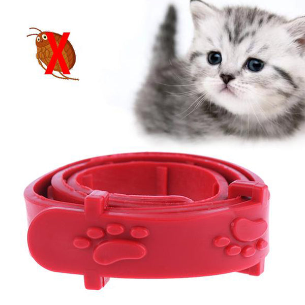 Anti-Flea Pet Collar